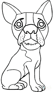 pug puppy coloring pages pug puppy coloring pages pug coloring page pug puppy coloring page cute pug colouring pages free pug puppy colouring pages