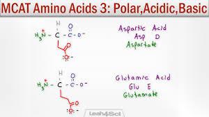 Mcat Amino Acid Chart Polar Acidic And Basic Amino Acids
