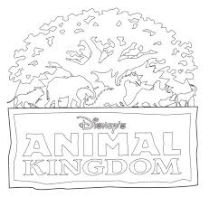 Animal Kingdom Animal Kingdom Colouring Book Marotta S Animal
