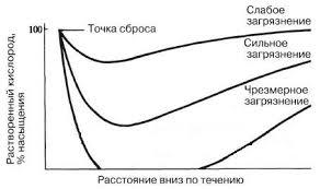 Эвтрофикация Механизм воздействия эвтрофикации на водоемы  Типичные кривые кислородного истощения влияние сброса в реку органики на концентрацию растворенного кислорода в воде