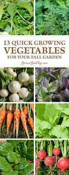 fall garden vegetables. instead of watching your summer crops struggle to ripen the last few fruits, pull them fall garden vegetables g