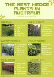 pin on home garden infographics
