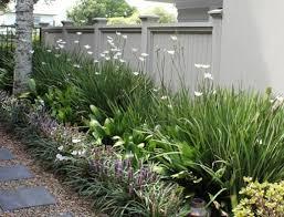 Small Picture Alluring 25 Garden Design Nz Ideas Design Decoration Of 114 Best