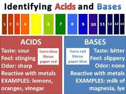 Acid And Base Chart Acids And Bases Anchor Chart
