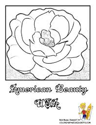 Small Picture Rose Flower Coloring Pages Flower Coloring Page Rose Flower