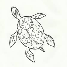 Small Picture Images For Drawings Of A Turtle Sea Turtles Pinterest