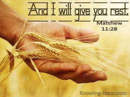 18 Bible verses about God's Provision