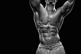 The Anatomy Of Your Abdominal Muscles