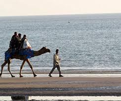 Kutch Tourism, Kutch Tour Packages, White Rann of Kutch - Gujarat Tourism  Online