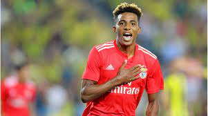 Tottenham leiht Fernandes – Benficas möglicher Gewinn: Ablöse abzüglich 250  Euro und 25 Bälle | Tran