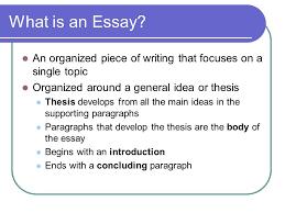is an essay organized how is an essay organized