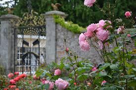 Victorian Kitchen Gardens Walled Garden Powerscourt Estate