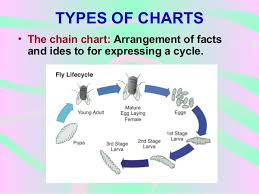 chain charts non projected av aids