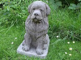 large sitting newfoundland dogs dog