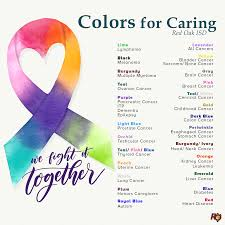 About ROISD / Colors for Caring