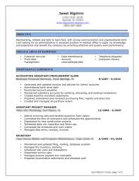 Best Job Resume Examples Example Document And Resume