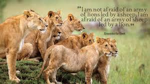 Leadership Quotes Wallpaper Hd 13249 Baltana