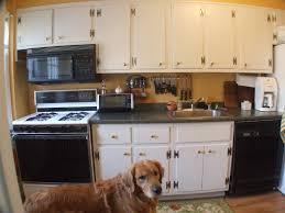 Budget Kitchen Cabinets Nj Website Inspiration Cheap Kitchen