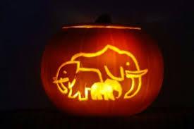 Elephant Pumpkin Carving Pattern Gorgeous Cute Elephant Pumpkins Wiring Diagrams