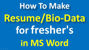 How To Make Resume For Freshers In Ms Word Bio Data Format For