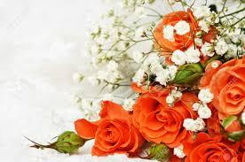 Wedding Photo Background Orange Roses On White Wedding Background
