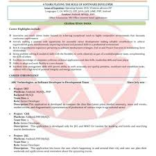 Senior Programmer Job Description Resume Template