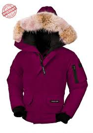 Harvest Time Sale Canada Goose Chilliwack Bomber Berry Youth s On Sale  Cost-free Shipping