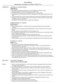 Internal It Auditor Resume Samples Velvet Jobs