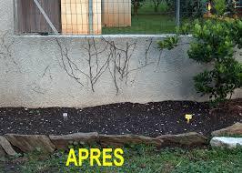 Idee Amenagement De Jardin Exterieur On Decoration D Interieur