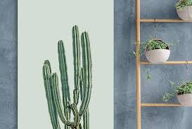 10 cactus themed room examples you need