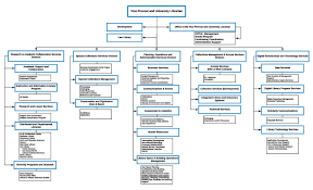 Organizational Chart Washington University In St Louis