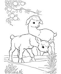 Goat Coloring Pages And Baby Farm Animal Coloring Pages Best Baby