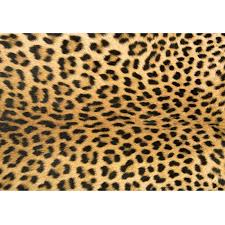 leopard print rug roselawnlutheran