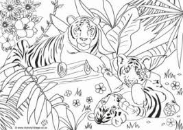 Simply click the free tiger, print the image and color until your hearts content. Tiger Colouring Pages