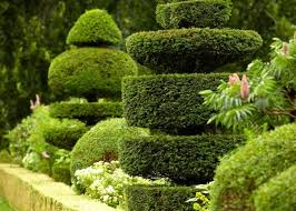Small Picture Garden Design Courses Online Stunning Course 11