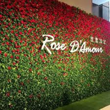 customized plastic flower grass wall