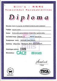 eng diploma 09 02 2013