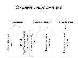 Реферат Правовое регулирование профессиональной деятельности  Правовое регулирование профессиональной деятельности