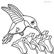 Small Picture Emejing Hummingbird Coloring Sheet Pictures New Printable