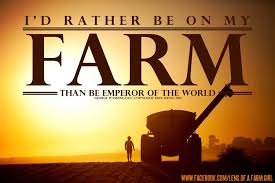 Farm Life Quotes Mesmerizing Farm Life Quotes 48 QuotesBae