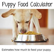 Brussels Griffon Weight Chart Puppy Weight Calculator How Big Will Your Dog Be