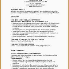 Programmer Resume Template Astonishing Puter Programmer Resume ...