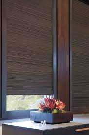 Noise Reducing Window TreatmentsRoom Darkening Window Blinds
