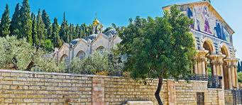 time frame the distance from the olive tree hotel to the garden of gethsemane is about a forty five minute walk but allow a couple of hours to explore and
