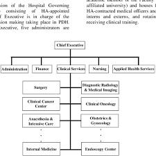 Medical Center Organizational Chart Organizational Chart Of Princess Diana Hospital Download