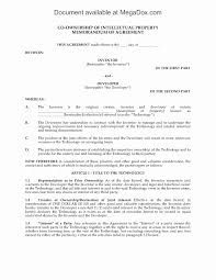 Ownership Agreement