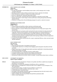 Six Sigma Consultant Resume Examples Lean Sample Templates Samples