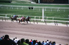 2013 Belmont Stakes Results Chart Belmont Stakes Wikipedia