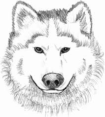 Coloring Pages Of Werewolves For Kids With Free Printable Wolf