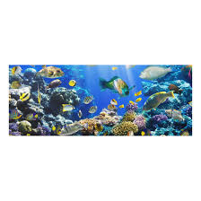 Print On Glass Underwater Reef Glass Wall Art Panoramic